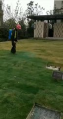 杭州一小区被曝为草地喷洒染色剂:让业主满意收房