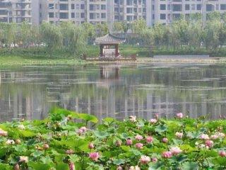 汝南地名故事之十一:秀雅小西湖