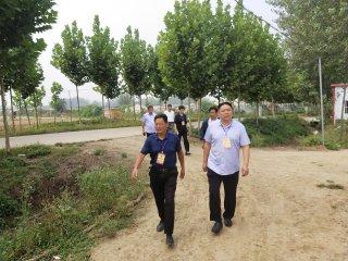 汝南县人大代表刘国履职尽责助力乡村振兴