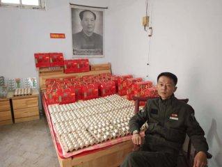 河南登封一母鸡产28枚子弹头怪鸡蛋