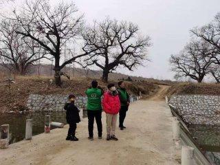 冬末巡访古树----驻马店市古树保护志愿者2021年首次古树巡访纪实