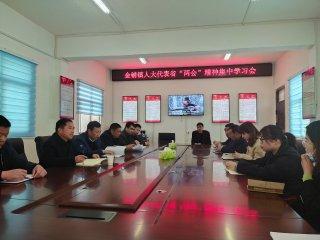 """汝南县金铺镇人大集中学习贯彻省""""两会""""精神"""