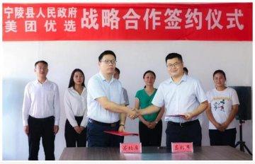 宁陵县第二届酥梨电商销售节启动万亩梨园喜获丰收